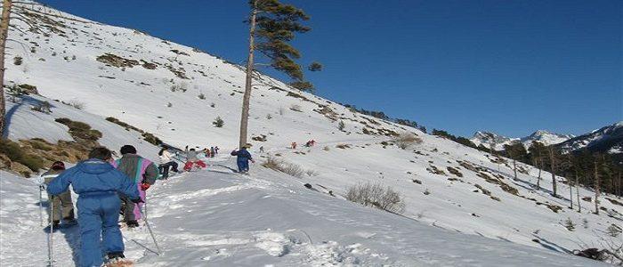 Comment découvrir les charmes des Alpes-Maritimes durant l'hiver ?